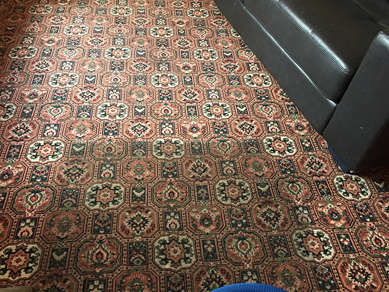 carpet cleaning cheltenham